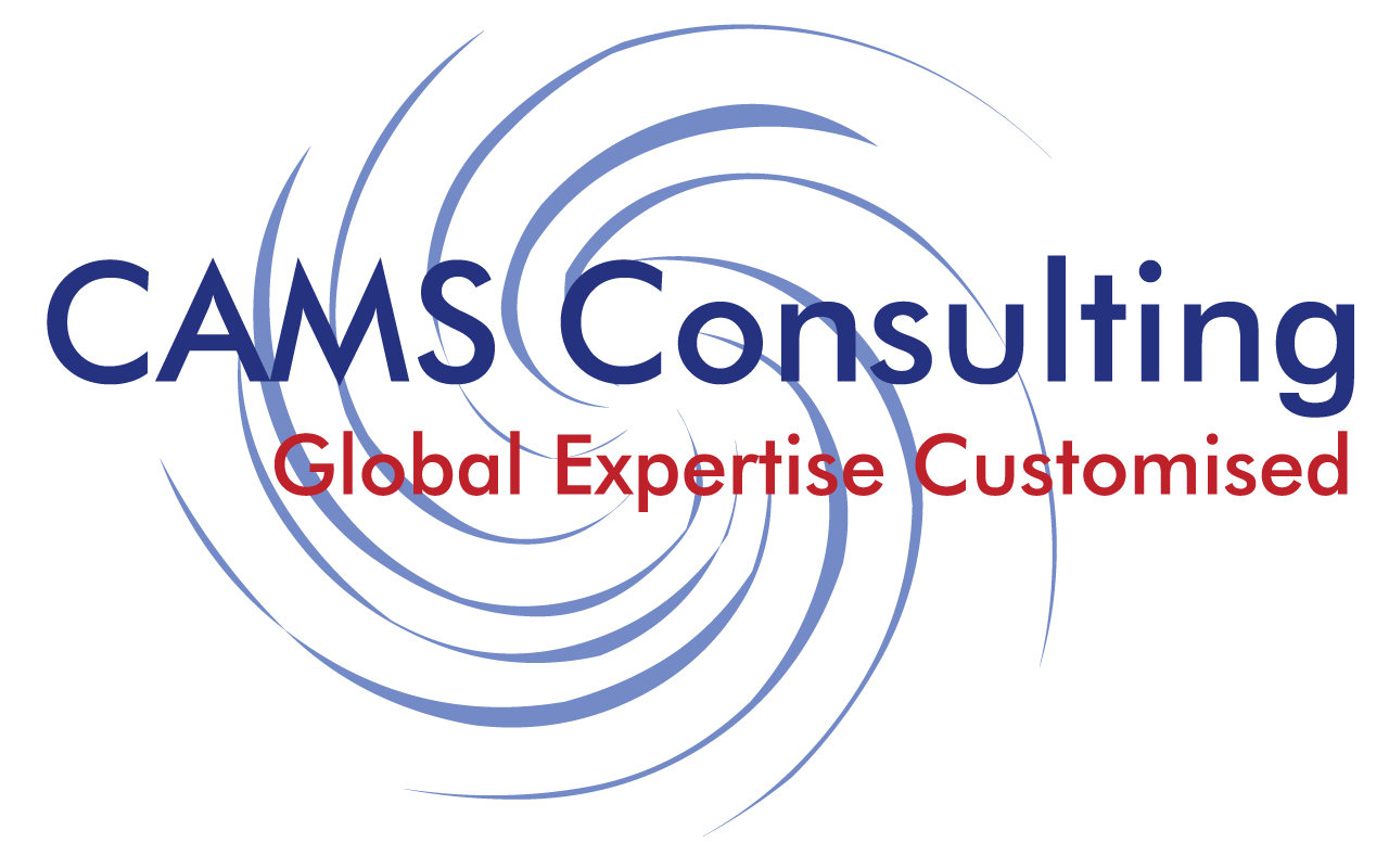 CAMS Consulting